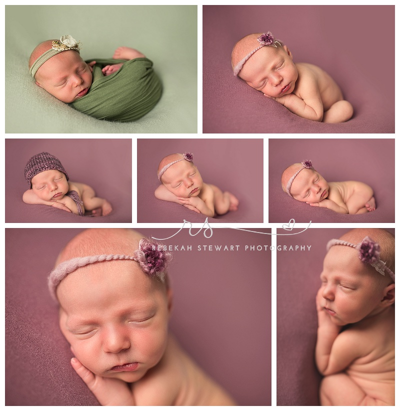 sweet baby girl cedar rapids newborn photos